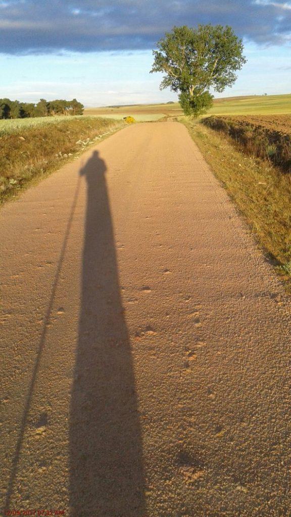Camino - Robert Bockstael