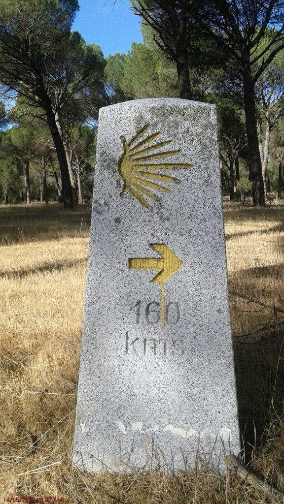 Madrid Camino Day 9 – Coca to Alcazaren
